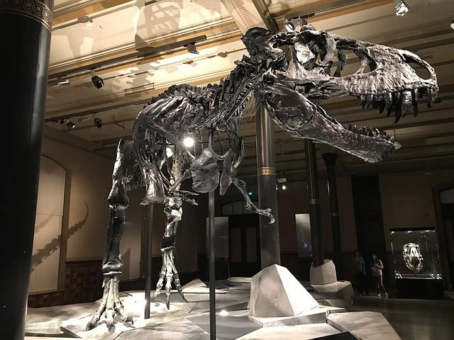 【メガ恐竜展 大阪の口コミ】子供2人と行ってきました!安く入場する方法とは?